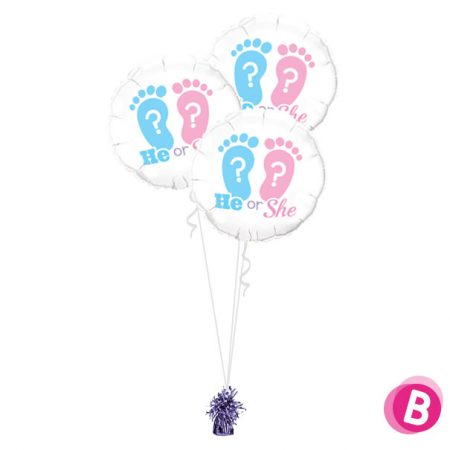 Ballons Gender Reveal He or She Trio